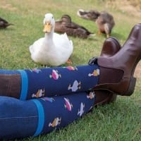Duck Socks