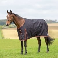 Ontarion Medium Turnout Black / Orange