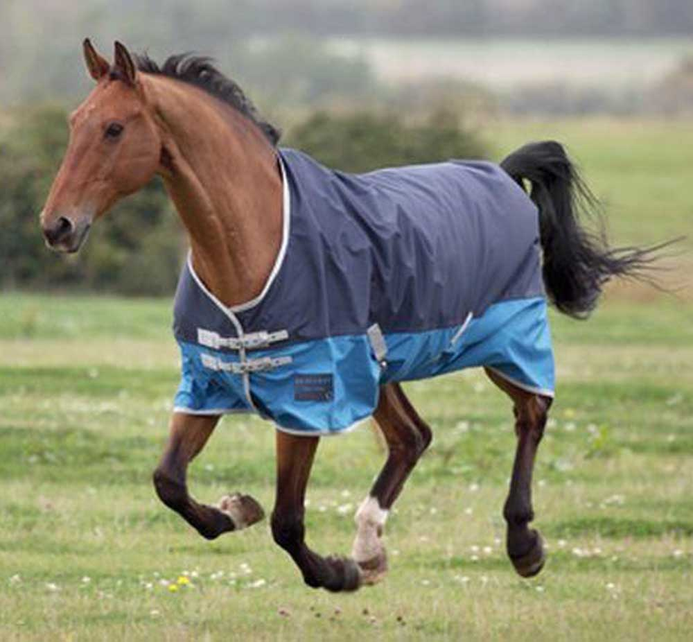 Ontario Medium Turnout Rug Clearance Colours