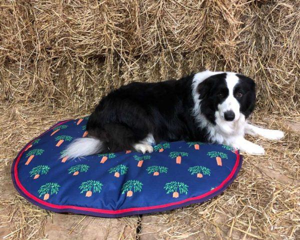 waterproof printed dog bed - v770 bridleway waterproof dog cushion large 01