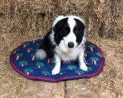 V770 Waterproof Dog Cushion