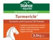 Turmericle