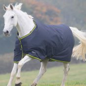 tempest-original-200-turnout-rug