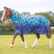 Shires Turnout Rugs