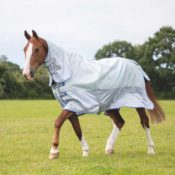 Tempest Original Waterproof Fly Rug