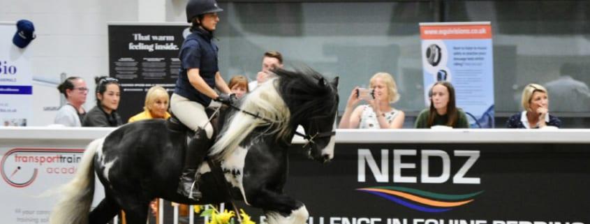 Horse Indoor Arena