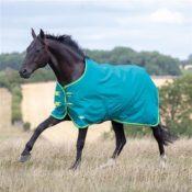 Tempest Original 50 Turnout Rug