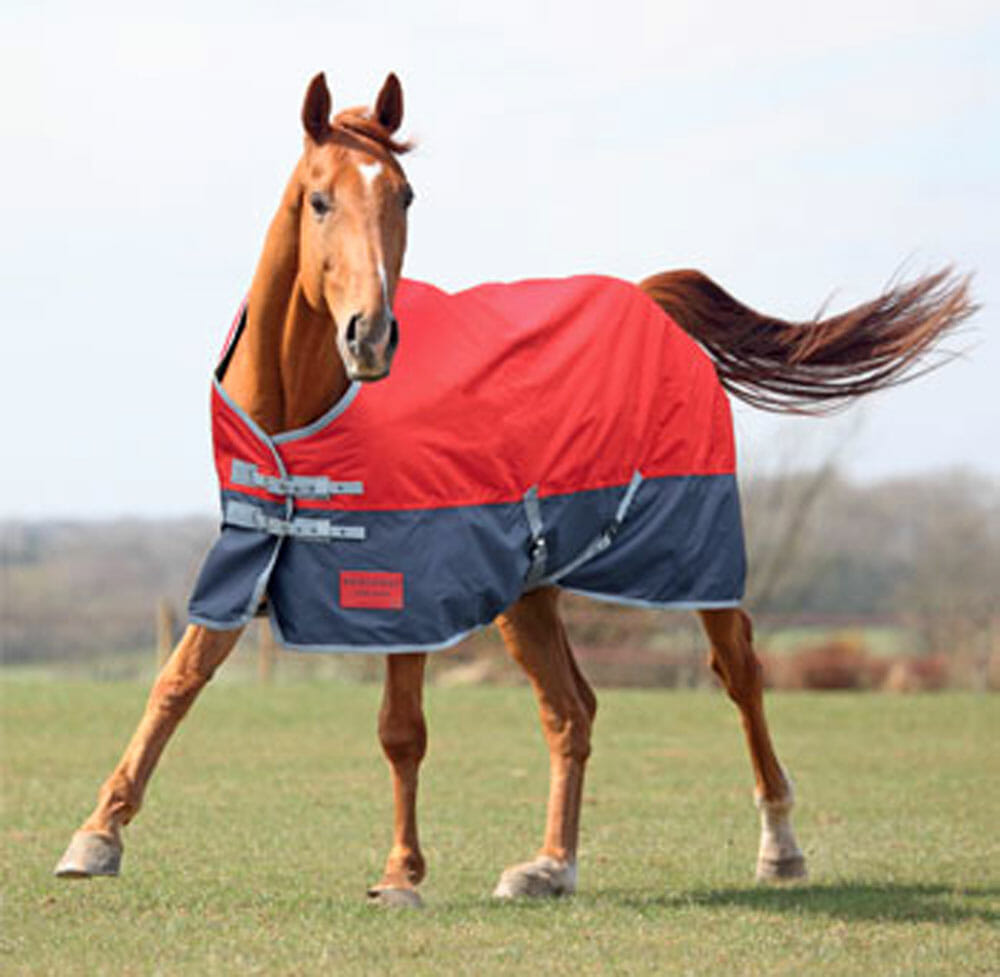 Turnout Rugs From Bridleway And Shires For All Seasons