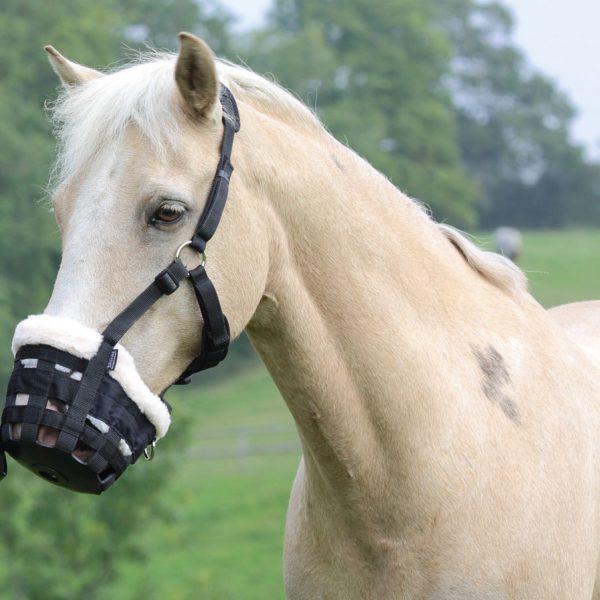 Deluxe Comfort Horse Grazing Muzzle