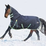 Bridleway Whistler Combo Turnout Rug