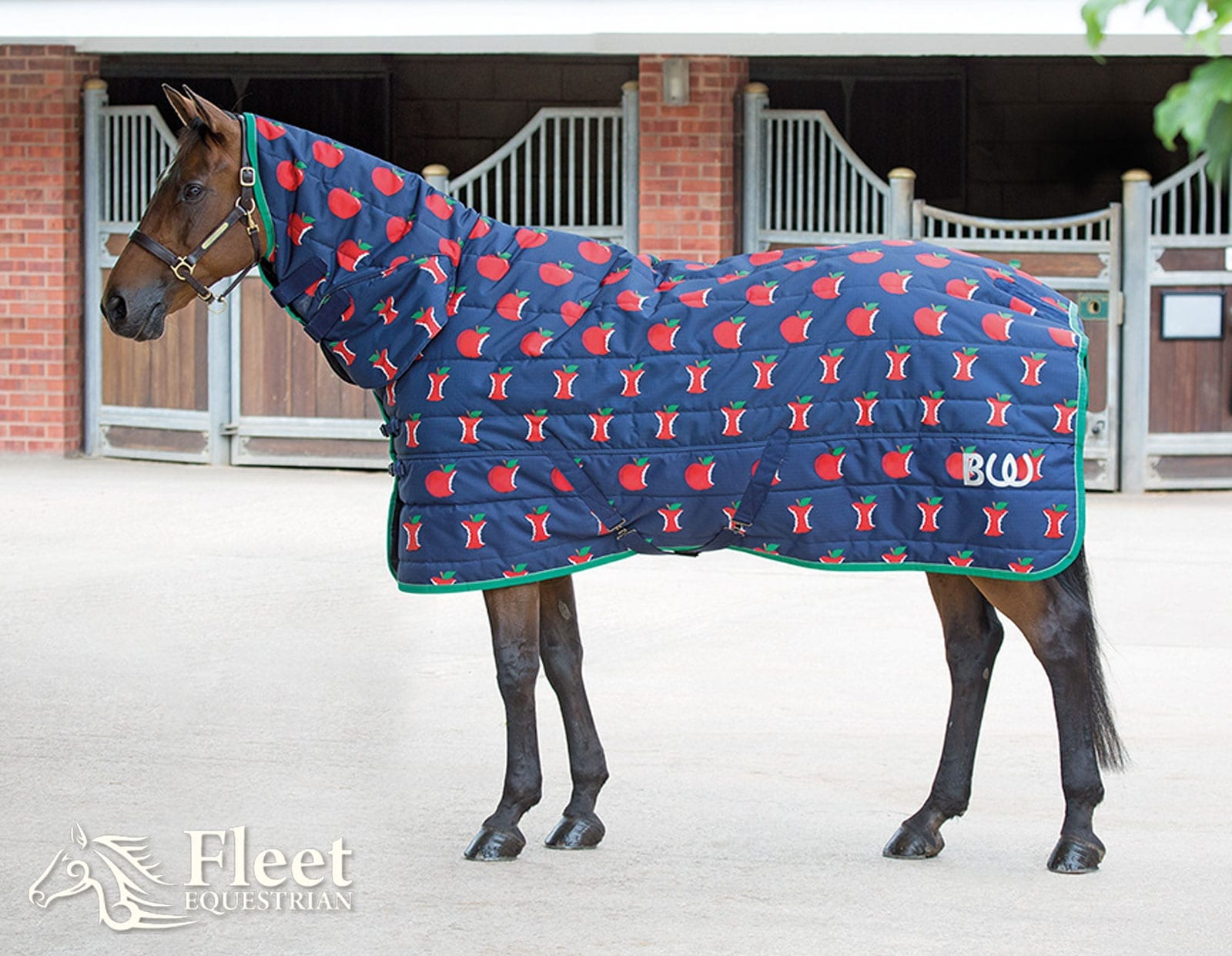 Bridleway Quebec Stable Combo Rug 220g