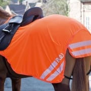 Bridleway Visibility Lightweight Exercise Sheet