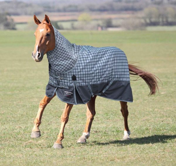 Bridleway Vancouver Winter Turnout Rug with Neck Set