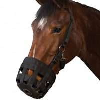 Shires Comfort Horse Grazing Muzzle