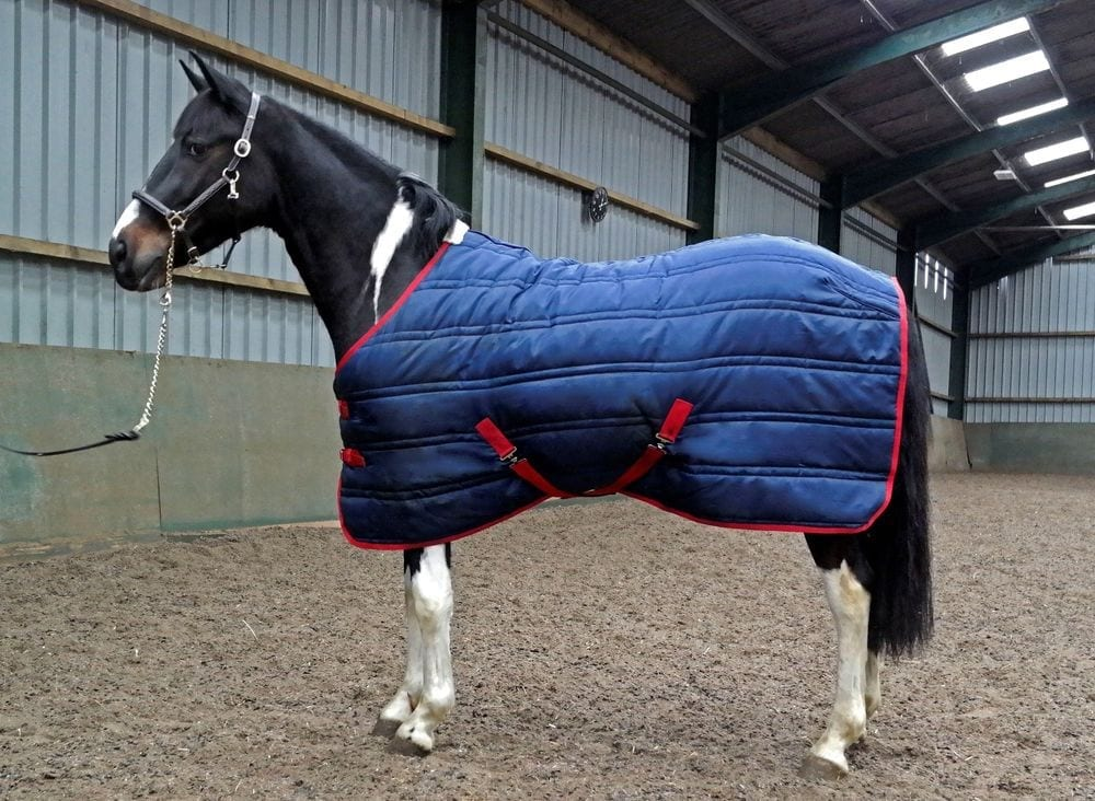 John Whitaker Thomas Stable Rug 250g