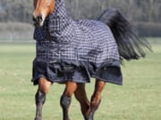 Bridleway Vancouver Combo Winter Turnout Rug