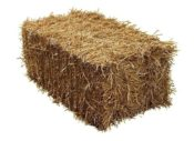Fleet Farm Barley Straw Bale - Barley Straw Bale Feed Quality Ideal for Horses and other pets 322862313470