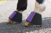 Shires ARMA Neoprene Over Reach Boots - Shires ARMA Neoprene Over Reach Boots 222650395340