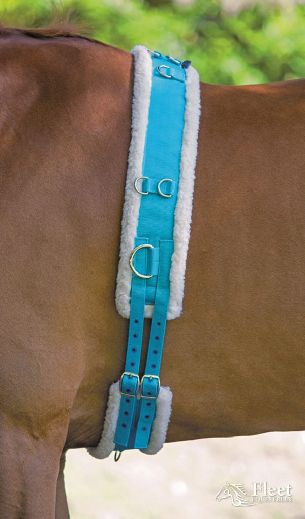 Shires Nylon Roller with Fleece Padding - Shires Nylon Roller with Fleece Padding New Colours 322522015835 2