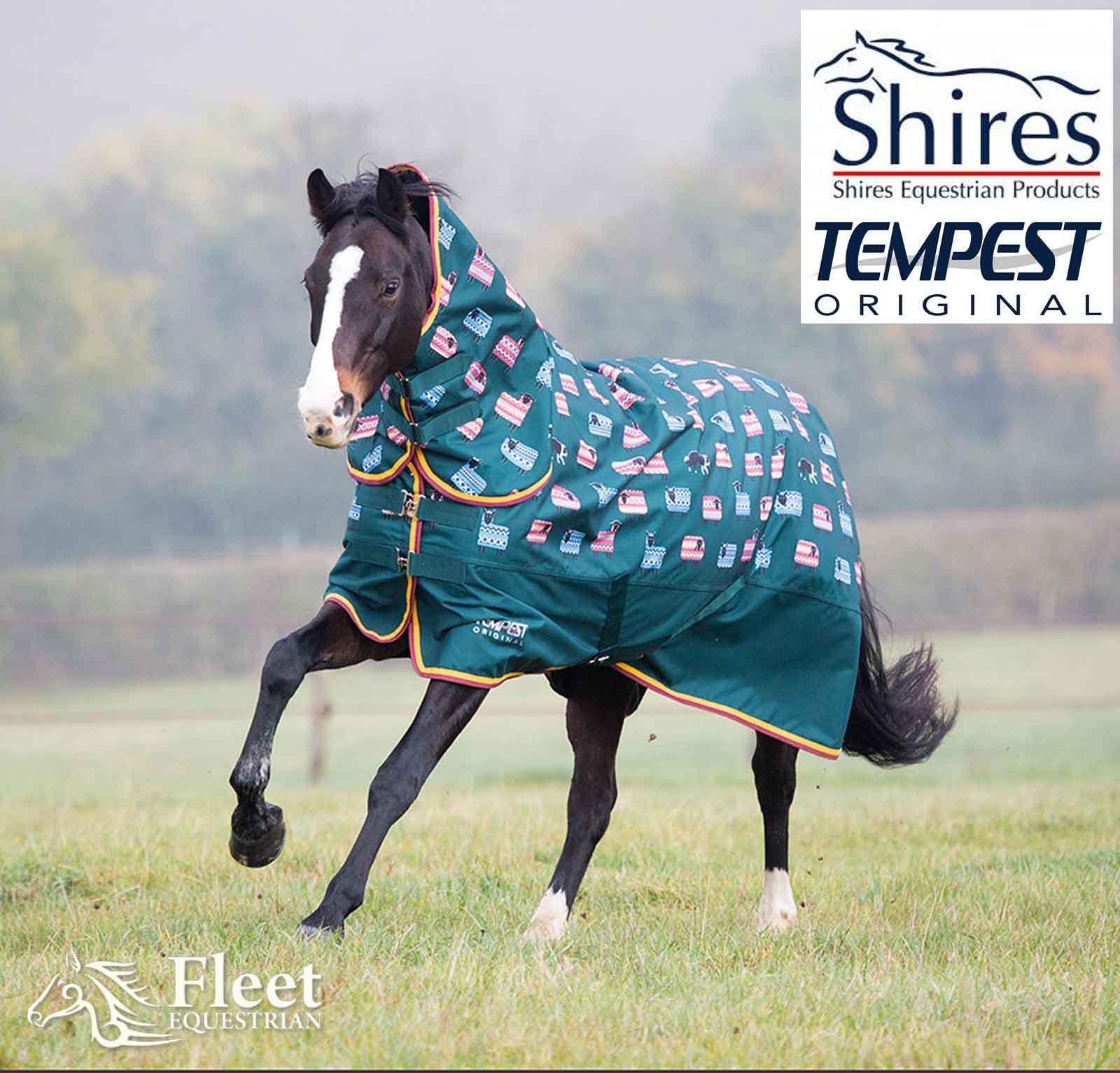 Shires Tempest Original 200 Combo
