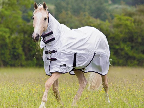 Shires Tempest Original Fly Combo - Shires Tempest Original Fly Combo 323313108745