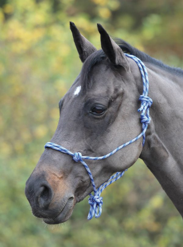 Shires Rope Control Headcollar - Shires Adjustable Rope Halter 322019701257 2